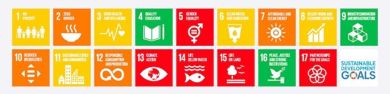 SDGs目標別達成度